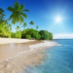 Tropical Beach in Barbados - Your Next Business Class Destination | Just Fly Business