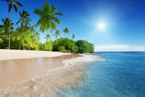 Beach in Barbados - Your Next First Class Destination - Just Fly Business