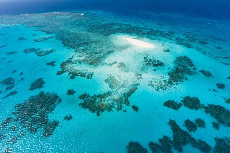 The Great Barrier Reef near Cairns, Queensland