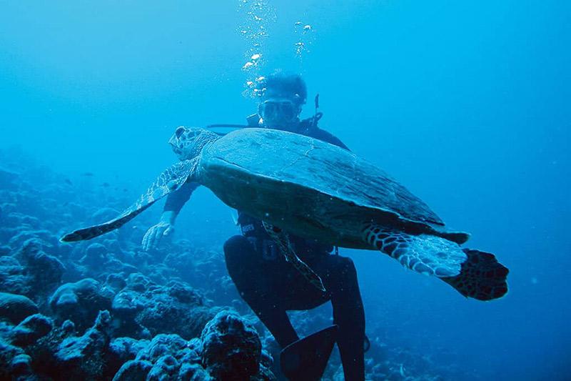 Grenada Scuba Diving