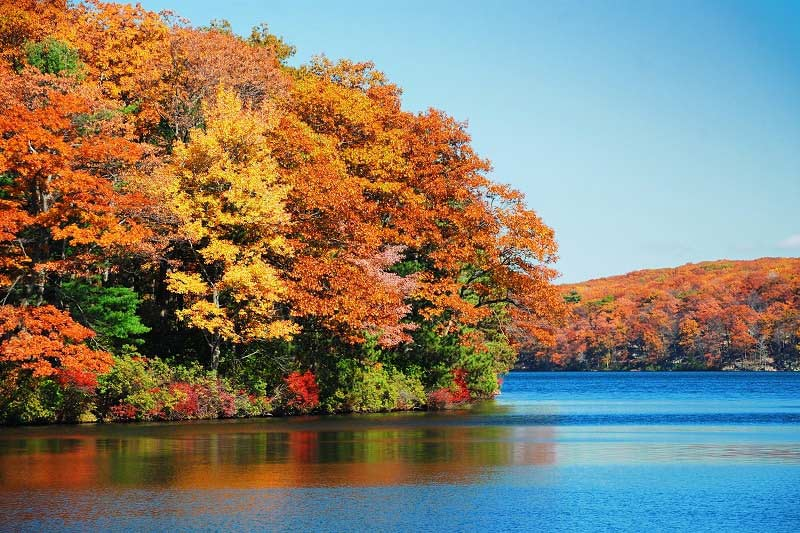 Fall Foliage in New England, USA