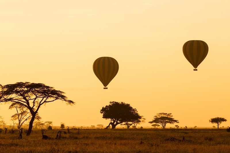 Hot Air Balloon at Sunrise over the Serengeti