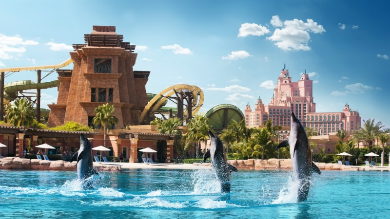 Dolphin Bay at Atlantis The Palm, Dubai