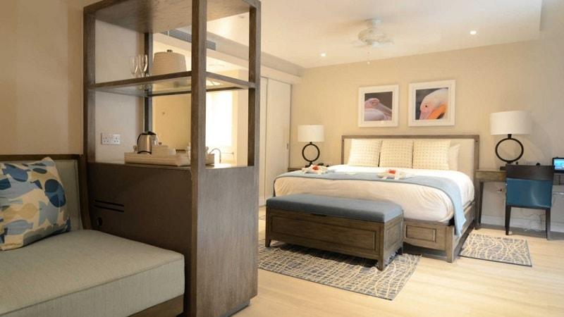 grand luxury ocean view junior suite
