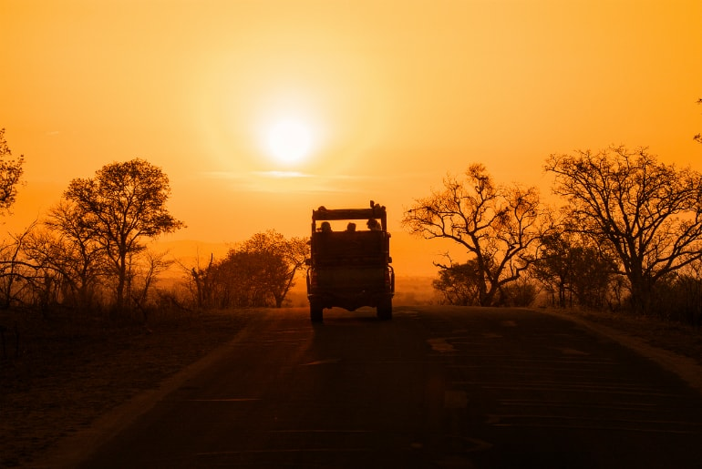 Kruger National Park Safari in South Africa