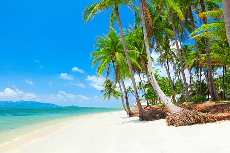 White Sand Beach - 5 Perfect Beach Destinations | Just Fly Business