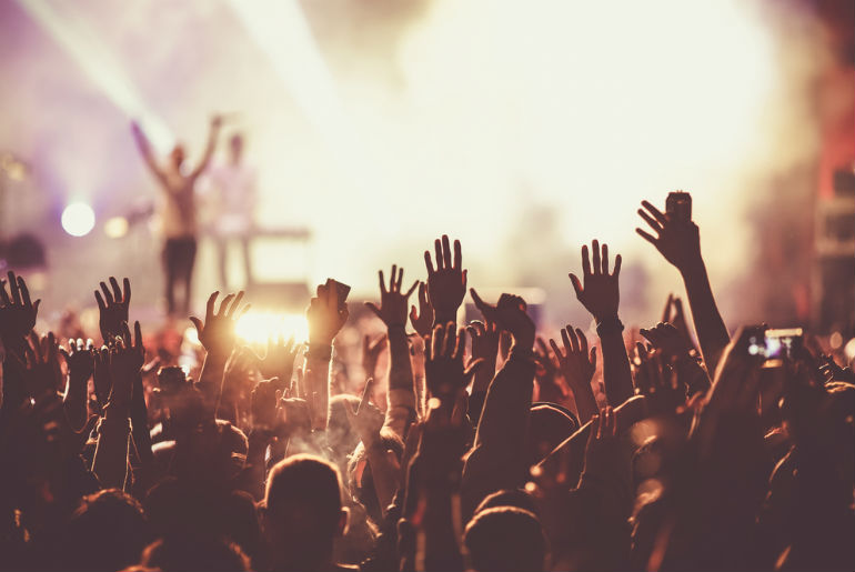 Crowd at concert - summer music festival | Just Fly Business Blog