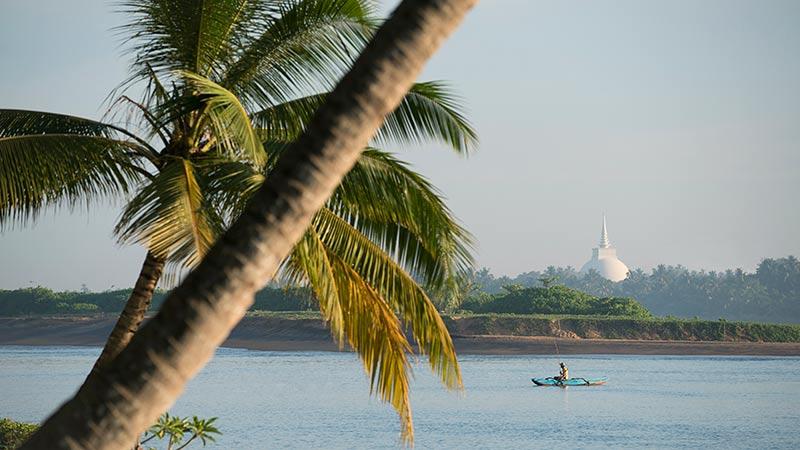 sea view with boat and plam trees at Avani Kalutara Resort, Sri Lanka