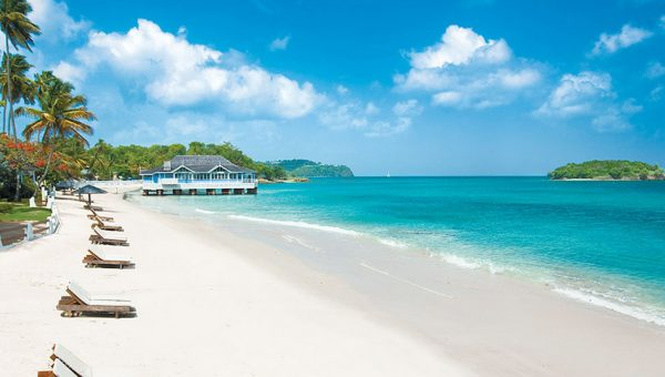A line of sun lounges on a aplm lined white sand beach at Sandals Halcyon Beach Resort in Saint Lucia