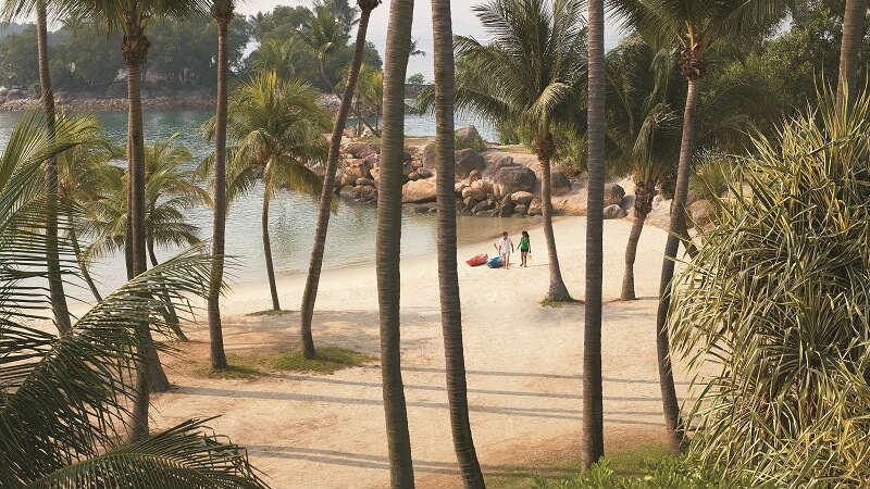 Sandy beach and palm trees at Shangri La Rasa Sentosa Resort & Spa, Singapore