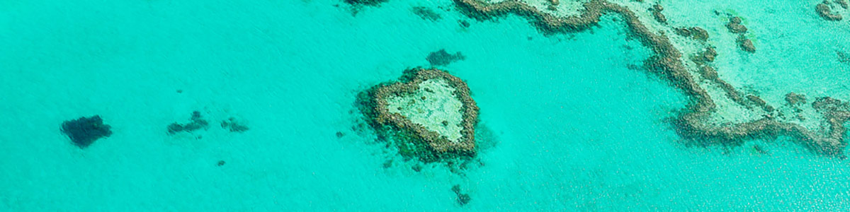 Heart Reef in the Great Barrier Reef in Queensland Australia