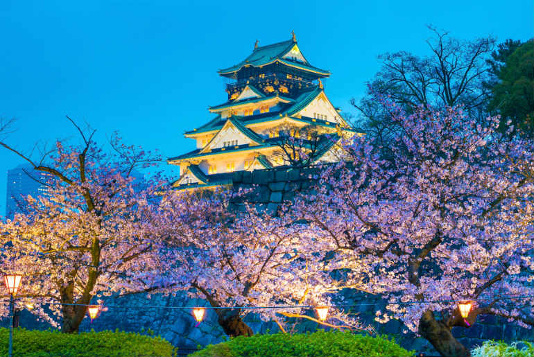 Osaka Castle at night surrounded by blooming cherry blossom trees