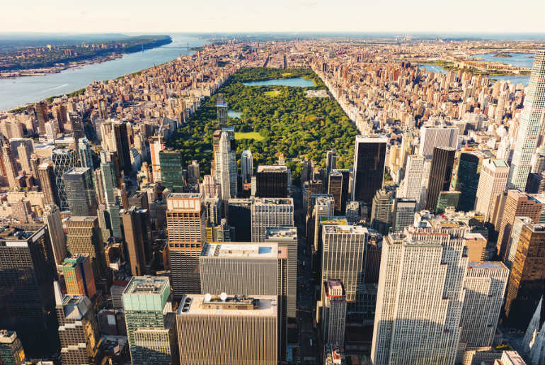 Central park in New York and skyline